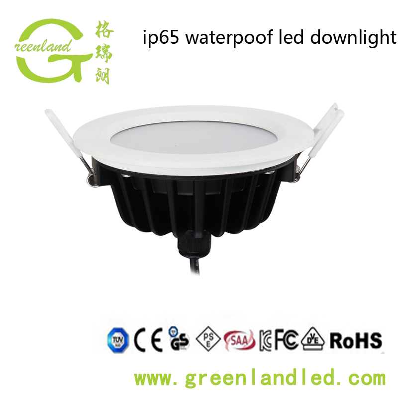 220V IP65 LED Ceiling Downlight