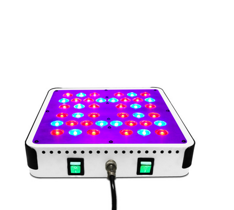 CE ROHS Full spectrum 3 year warranty 200w dimmable led grow light  for Hydroponic greenhouse